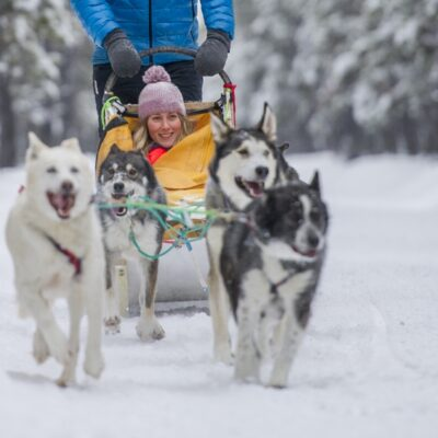 Canada Yukon Dog Mushing Credit